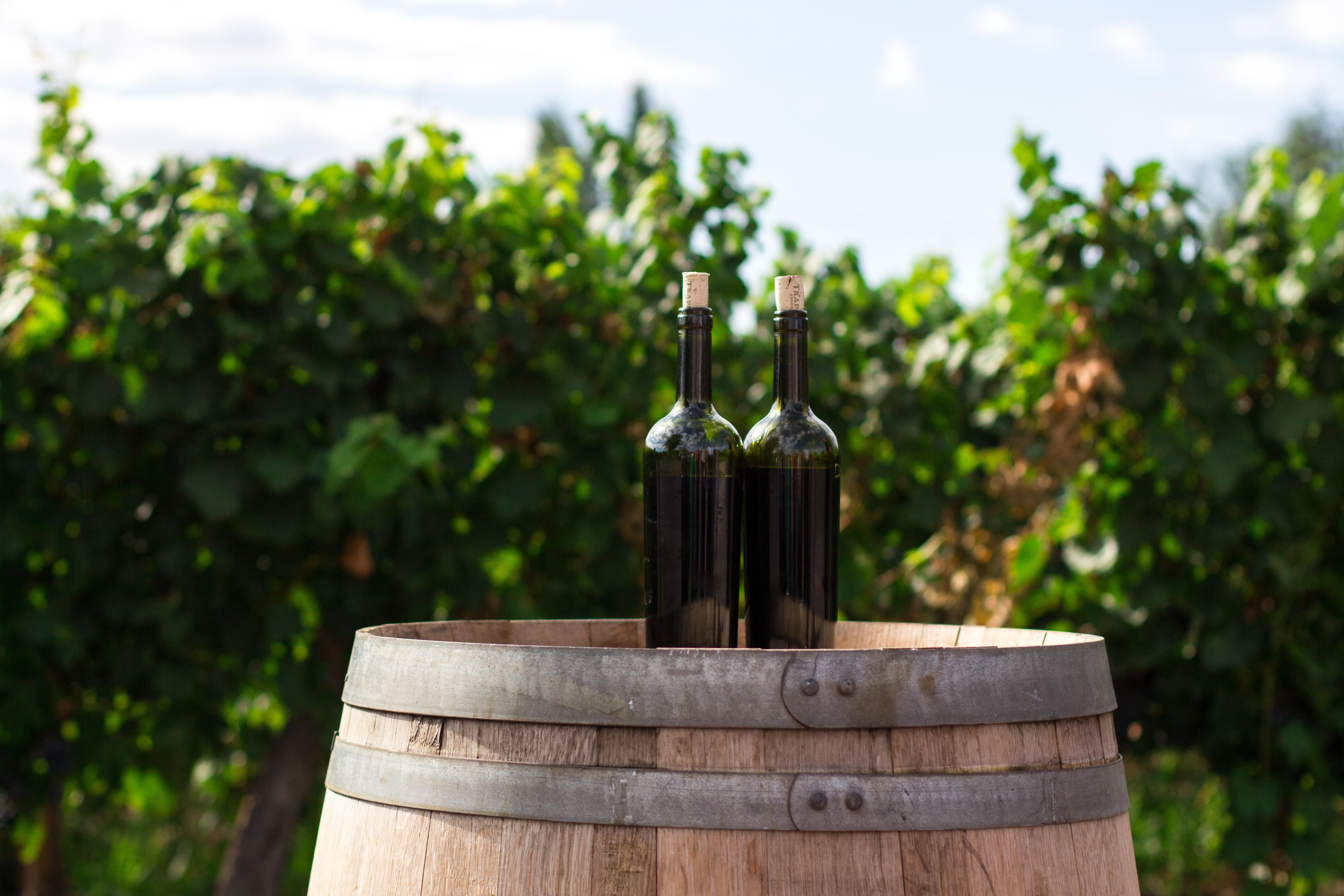 Proefnotities Bordeaux 2012 2013 Perswijn