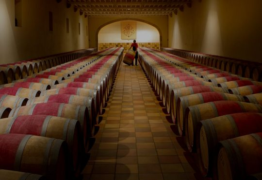 Bordeaux wine barrels (photo: UGCB)