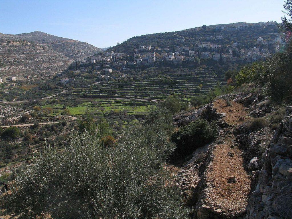 Wijngaardlandschap Battir