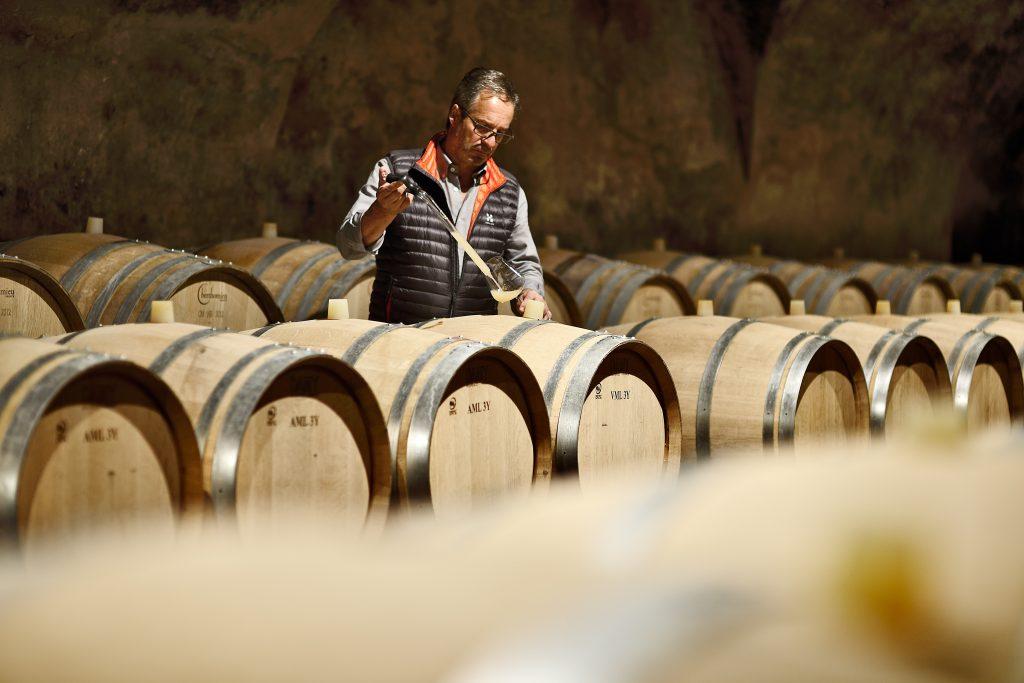 Wijnmaker Hans terzer